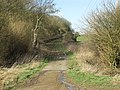 Damaged bridleway. - geograph.org.uk - 356406.jpg