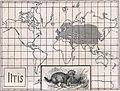 Das Kürschner-Handwerk, II. Auflage 3. Teil, S. 29, Weltkarte Verbreitung des Iltisses.jpg