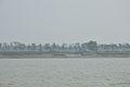 Debhata - River Ichamati - Bangladesh-India 2015-01-13 4501.JPG
