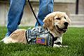 Defense.gov photo essay 120523-D-BW835-286.jpg