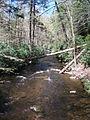 Delaware Water Gap National Recreation Area - Pennsylvania (5677788859).jpg