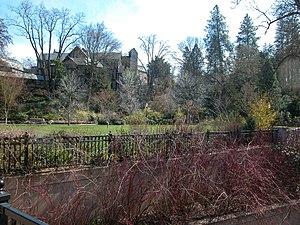 Lithia Park - Lithia Park green