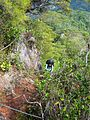 Descent via Gunung Tangga Lima Belas.jpg