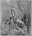 Die Gartenlaube (1882) b 649.jpg
