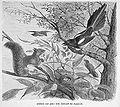 Die Gartenlaube (1887) b 698.jpg