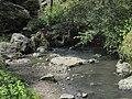 Divoká Šárka - panoramio (21).jpg