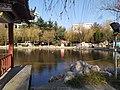 Dongyuan Lake 02.jpg
