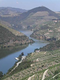 Douro Valley Regua