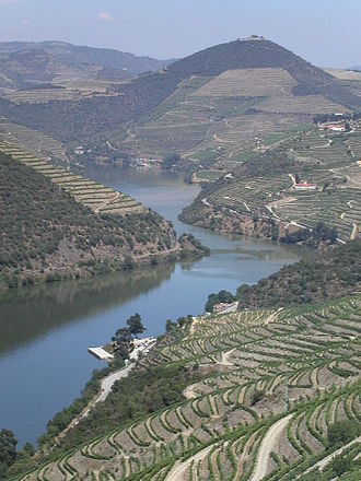 Norte Region, Portugal - Vineyards in the Douro Valley are exposed to hot summers and seasonal aridity.