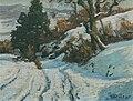 Drachenfelser Ländchen Winter Toni Wolter.jpg