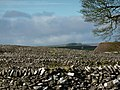 Dry stone walls at Litton - geograph.org.uk - 1564224.jpg