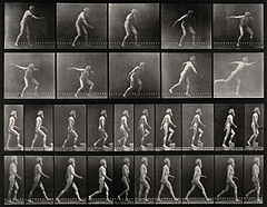 E. Muybridge throwing a disc, ascending stairs, and walking. Wellcome V0048740.jpg