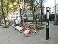 EcoBici Ciudad de México.jpg