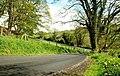 Ednego Avenue near Dromore (2) - geograph.org.uk - 788081.jpg