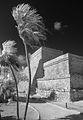 El Castillo (8424831422).jpg