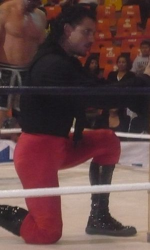 El Zorro (wrestler)