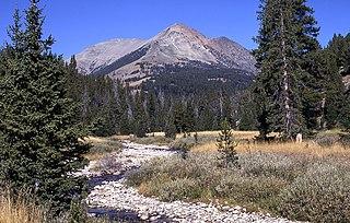 Electric Peak mountain