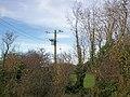 Electric Pole, Sandy Grove, Llanteg - geograph.org.uk - 1051341.jpg