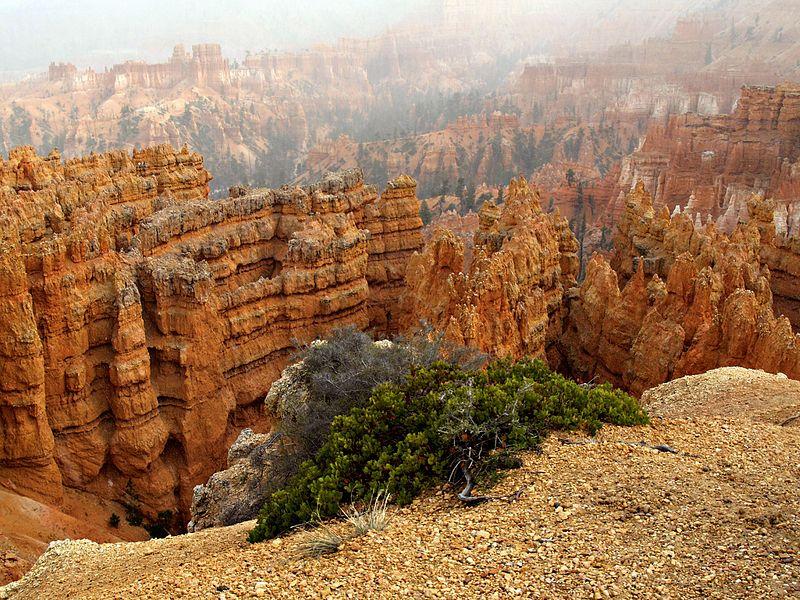 File:Eroded Sedimentary Rocks Bryce Canyon National Park Utah USA.jpg