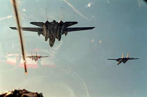 F-14A VF-41 Operation Desert Storm.JPEG