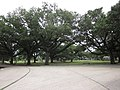 FDR Mall City Park NOLA June 2011 D.JPG