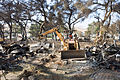 FEMA - 33634 - Wildfire cause debris in California.jpg