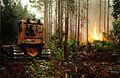 FEMA - 832 - Photograph by Liz Roll taken on 06-26-1998 in Florida.jpg