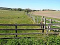 Fence near High Trewhitt - geograph.org.uk - 1332049.jpg