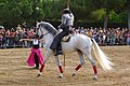 Feria del Caballo - Badalona - panoramio (1).jpg