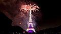 Feu d'artifice du 14 juillet 2014 - Tour Eiffel (21).jpg