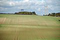 Field of Winter Wheat - geograph.org.uk - 2100697.jpg