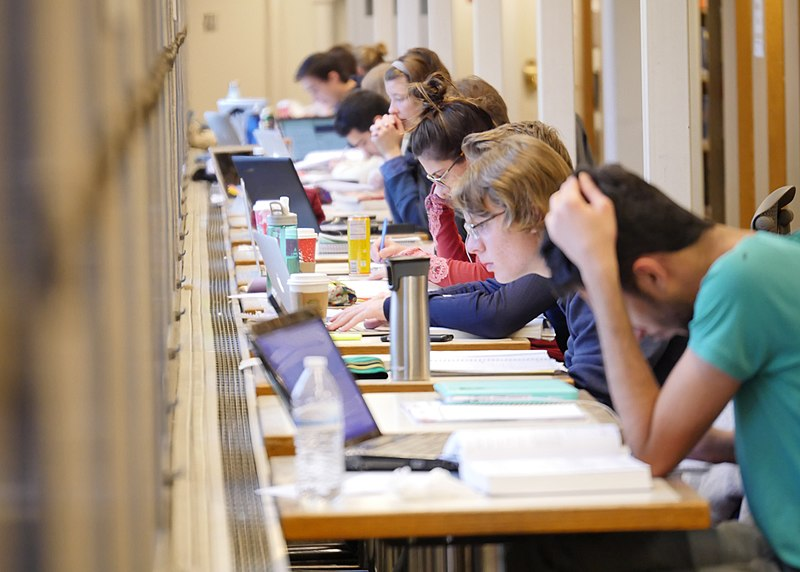 students reading and studying