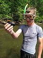 Finding mussels (5762875092).jpg