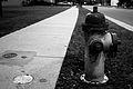 Fire Hydrant (3088050706).jpg