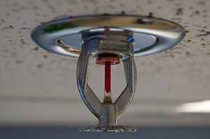 Fire sprinkler system - A glass bulb type sprinkler head will spray water into the room if sufficient heat reaches the bulb and causes it to shatter. Sprinkler heads operate individually. Note the red liquid alcohol in the glass bulb.