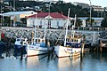 Fishing boats at Napier - panoramio.jpg