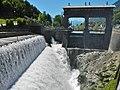 Fiume Adige, Etsch - panoramio (1).jpg