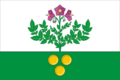 Flag of Salairskoe (Tyumen oblast).png