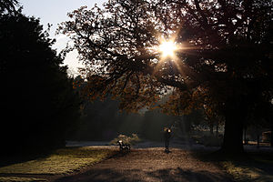 Boston Manor Park - Image: Flickr law keven On a Cold ^ Frosty Morning...