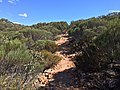 Flinders Ranges SA 5434, Australia - panoramio (162).jpg