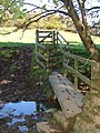 Footbridge on Modbury Footpath 2 - geograph.org.uk - 274134.jpg