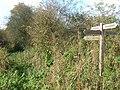 Footpath Junction near Spring Hill - geograph.org.uk - 1026874.jpg