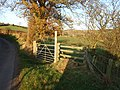 Footpath to Adstone - geograph.org.uk - 614198.jpg