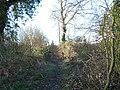Footpath to Hockley Wood - geograph.org.uk - 129969.jpg