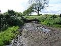 Footpath to Maythorne - geograph.org.uk - 175179.jpg