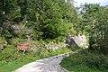 Forêt domaniale de Prades.jpg