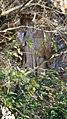 Formazione rocciosa Colli Euganei 03.jpg