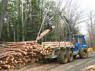 Forwarder - A medium-sized forwarder piling logs.
