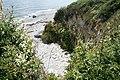 Fowey, eroding cliffs - geograph.org.uk - 1380861.jpg