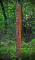 Frank Gantz Trail (Revisited) (1) (27541359551).jpg